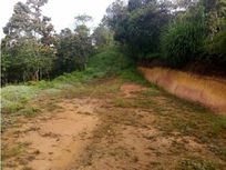Lote Rionegro San Lus 180 mill 5 mil mts