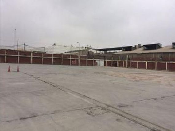 Local Industrial 19,000 Callao - wasi_1305023